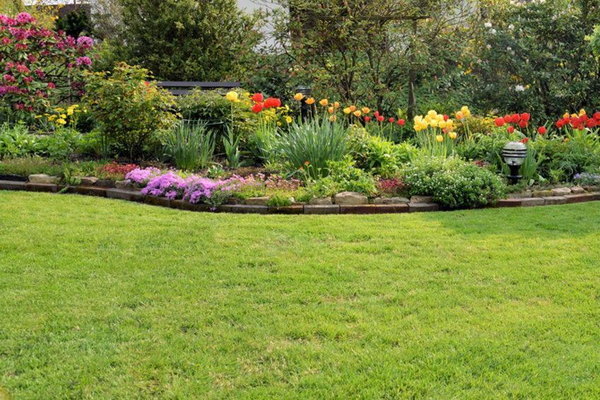 Les jardins de maxime entretien de jardins for Entretien jardin 45